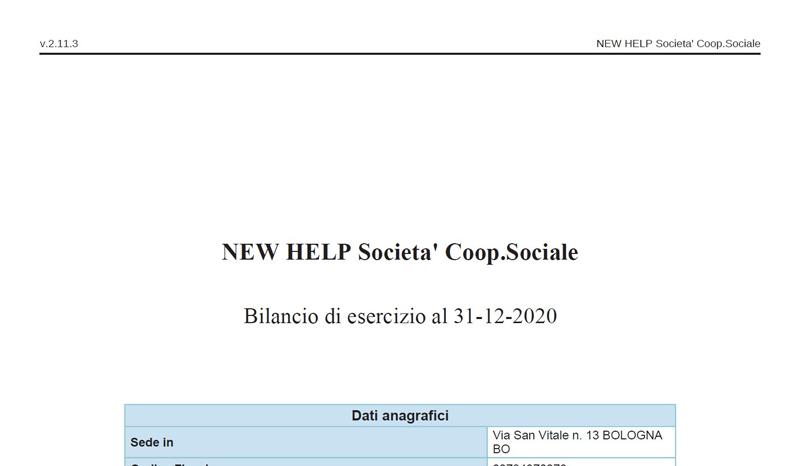 New Help - bilancio di esercizio  2020